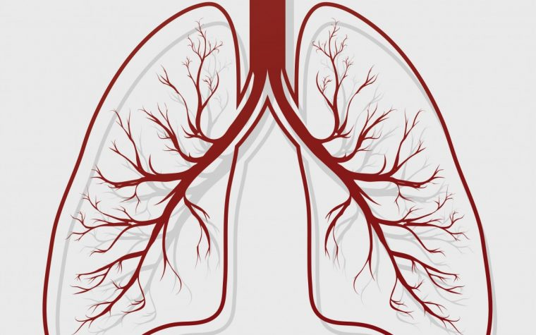 Keratan sulfate and COPD