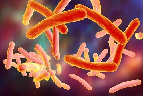 COPD Patients with Non-Tuberculous Mycobacterial Pulmonary Disease Face Higher Mortality, Study Shows