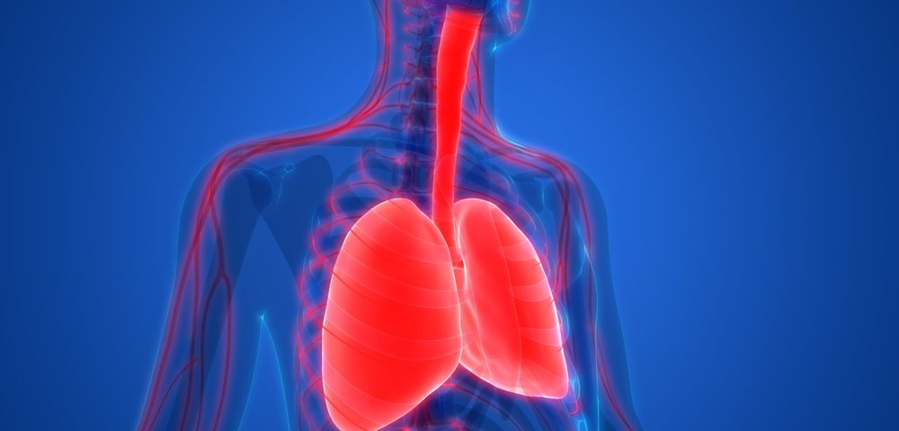 Using Ventilator to Control Oxygen May Be COPD Game-changer, Study Suggests